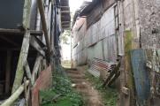 PEREIRA / Cantine Las Colonias
