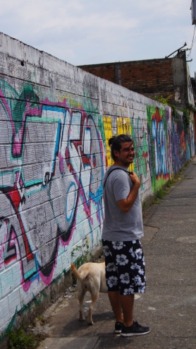 PEREIRA / Murs peints